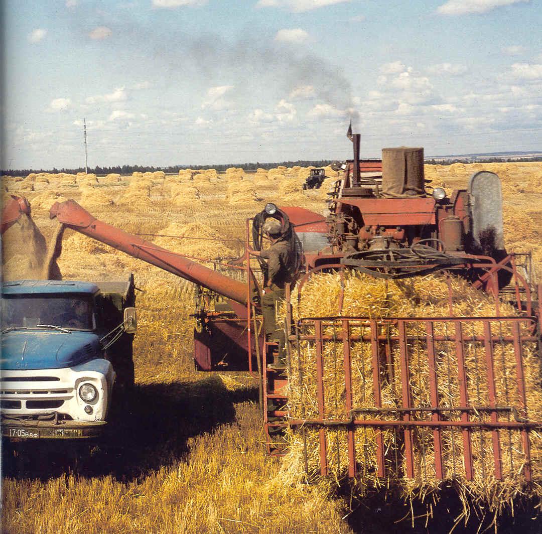 Курсовая сельское хозяйство алтайского края